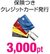 保険つきクレジットカード発行 3,000pt