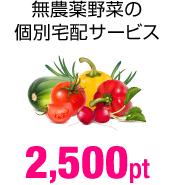 無農薬野菜の個別宅配サービス 2,500pt
